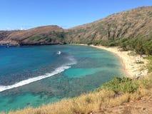 Louro Honolulu Havaí de Hanauma Fotografia de Stock Royalty Free