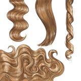 Louro longo brilhante, favoravelmente em linha reta e ondas do cabelo ondulado ilustração royalty free