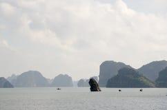 Louro longo do Ha Fotos de Stock
