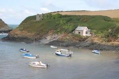 Louro, Pembrokeshire Foto de Stock