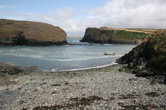 Louro, Pembrokeshire Fotos de Stock