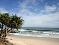 Louro principal de Byron da praia - Austrália foto de stock