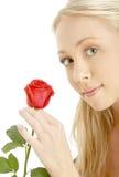 Louro romântico com vermelho levantou-se Fotografia de Stock
