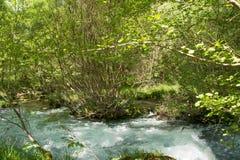 Lousios flod, Grekland Fotografering för Bildbyråer