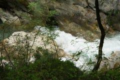 Lousiosrivier in de Peloponnesus, Griekenland royalty-vrije stock afbeelding