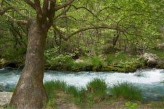 Lousiosrivier, Griekenland stock afbeelding