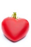 Louva-a-deus com um coração vermelho grande em suas patas Cumprimentos do feriado, vale Imagens de Stock