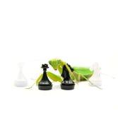 Louvas-a-deus verdes com parte de xadrez do cavaleiro preto no fundo branco, Fotos de Stock Royalty Free