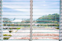 Louver γυαλιού παραθύρων στο σπίτι στοκ εικόνα με δικαίωμα ελεύθερης χρήσης