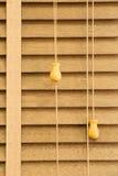 Louver ξύλο στοκ εικόνα