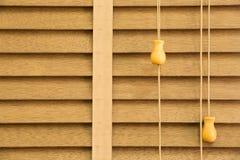 Louver ξύλο στοκ φωτογραφίες με δικαίωμα ελεύθερης χρήσης