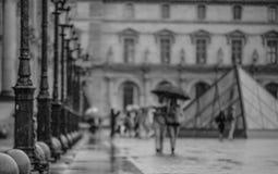 Louvre et couples Photo stock
