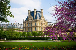 Louvre Garden royalty free stock image