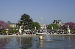 Louvre museum and park des tuileries fountain. Beautiful fountain in park des tuileries with many people siting and relaxing in the sun Royalty Free Stock Photography