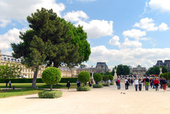 Louvre museum. The Louvre museum at spring Royalty Free Stock Image