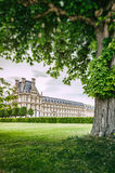 Louvre palace at spring. Paris, France Stock Image