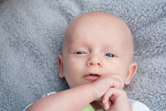 Lovable Little Baby Royalty Free Stock Images