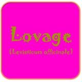 Lovage κουμπιών ελεύθερη απεικόνιση δικαιώματος