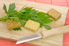 Lovage. And boullion cubes for soup Stock Image