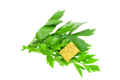 Lovage. Herbs (Lovage) and boullion cube for soup Stock Photos