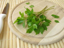 Lovage on cutting board Royalty Free Stock Photos