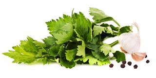 Lovage with pepper and garlic Stock Image