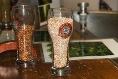 LOVAINA, BÉLGICA - 4 DE SEPTIEMBRE DE 2014: Diverso grano malteado para la producción de la cerveza en vidrios en la pequeña cerv fotos de archivo