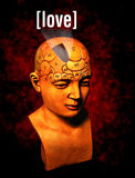 Love. A psychology model highlighting the love area of the brain Royalty Free Stock Photography