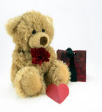 Love.... Cute fluffy teddy holding a red carnation and with heart and gift bag Stock Photos