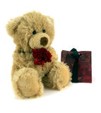 Love.... Cute fluffy teddy holding a red carnation and gift bag Stock Photos