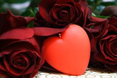 Love. Red heart and dark red roses Royalty Free Stock Image