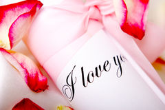 Love. Letter with roseleaf Royalty Free Stock Image