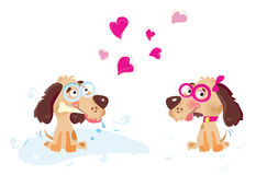 In love. Dogs in love. Vector illustration. See more pictures in my portfolio Stock Photo