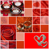With love. (marriage, rings, flowerses Royalty Free Stock Photography