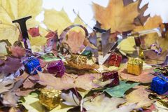 Love abstraction. Autumn leaves with some decorative elements.  stock photography