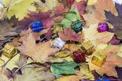 Love abstraction. Autumn leaves with some decorative elements.  royalty free stock photos