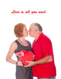 Love is all you need Royalty Free Stock Photos