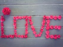 LOVE alphabet with red rose Royalty Free Stock Image