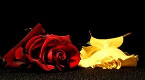 Love&jealousy Imágenes de archivo libres de regalías
