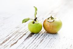 Love is in the apple, wedding rings royalty free stock photography