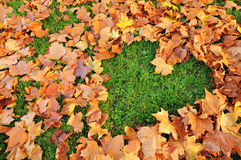 Love autumn Royalty Free Stock Photo