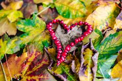 Love Autumn Stock Photo