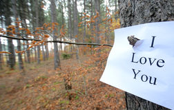 Love in autumn Royalty Free Stock Images