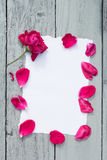 Love background with copy space for text. White paper on wooden table with red rose and petals Top view. Stock Images