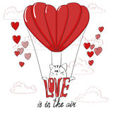 Love background. Cute cat in a air balloon. Royalty Free Stock Photo