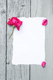 Love background with red rose Royalty Free Stock Image