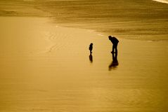 Love on the Beach. A picture of a father and child alone on a beach at sunset Stock Images