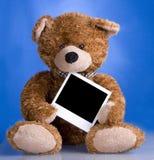 Love bear. With polaroid photo Royalty Free Stock Photo
