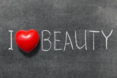 Love beauty Royalty Free Stock Images