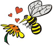 Love between bee and flower. Valentines greetings-Bee meets flower-love on the first sight Stock Photo